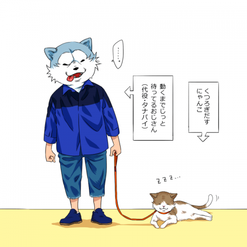 猫と散歩してるタナパイ